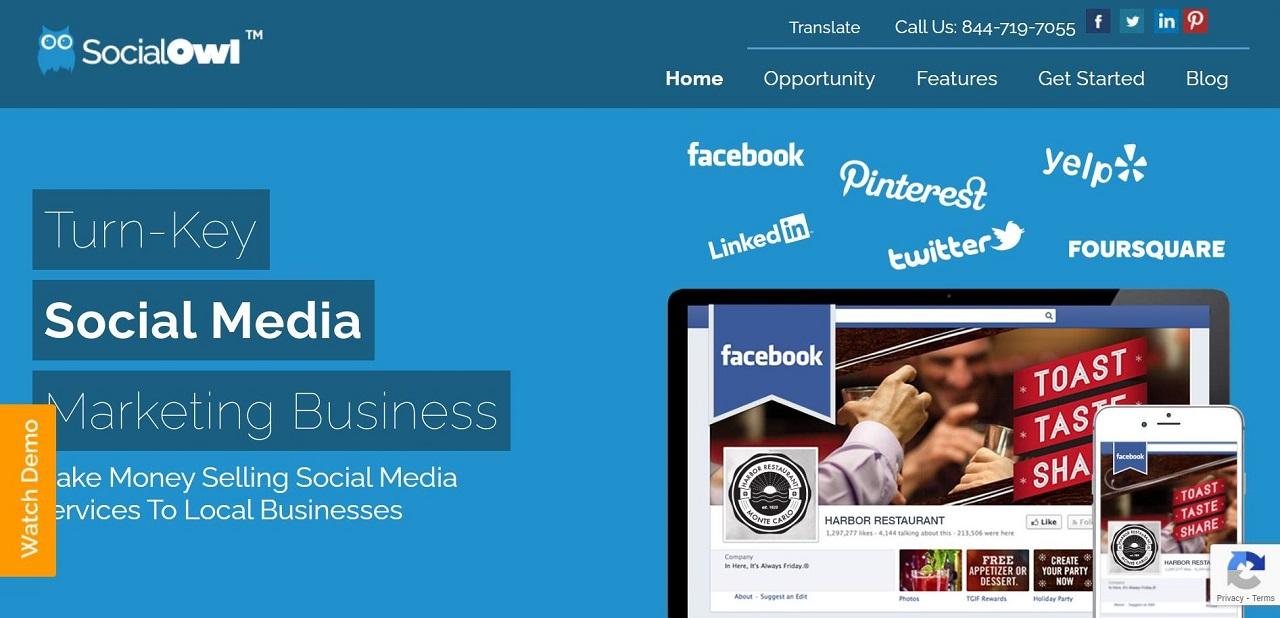 social owl social media sharing